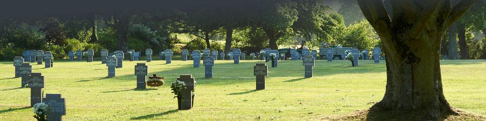 Friedhof1-header_15 image